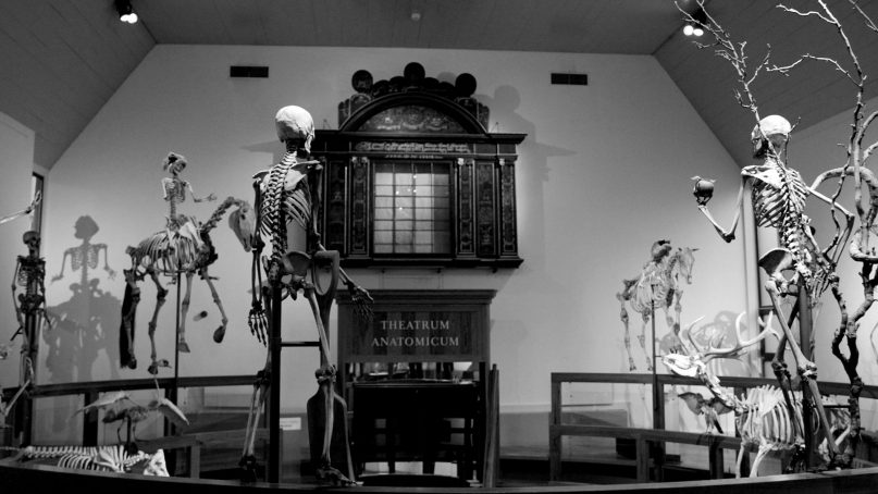 Black and white photo of Museum Boerhaave